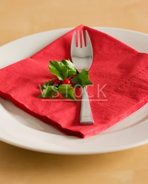 USA, Illinois, Metamora, Plate with red napkin, fork and holly on table