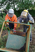 Haringey Council staff clear damaged play equipment and cut back overgrown shrubs and weeds in preparation for refurbishment of a disused play area in Tottenham, London.