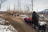 Charlie Bejna runs on a dirt trail 10 miles after leaving the Rohn checkpoint on the way to Nikolai during the 2013 Iditarod sled Dog Race   March 5, 2013...Photo by Jeff Schultz Do Not Reproduce without permission