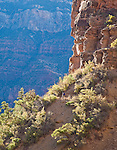 Hikers on rim to rim hike across Grand Canyon