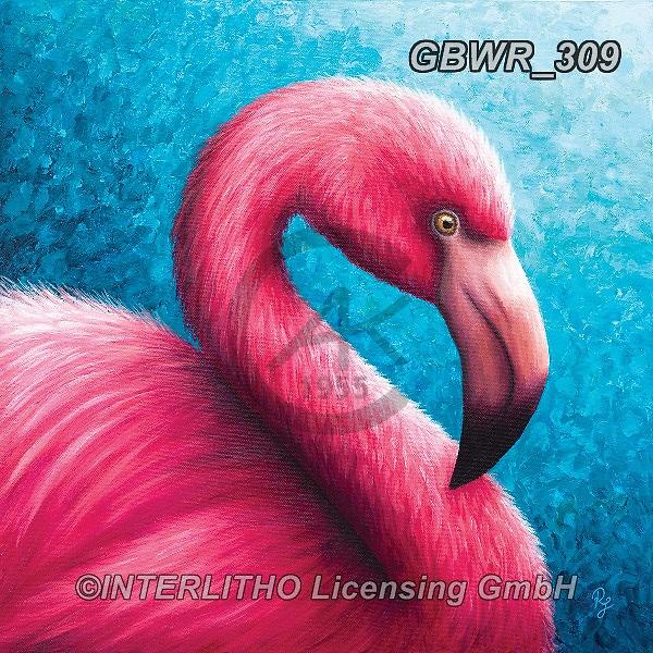 Simon, REALISTIC ANIMALS, REALISTISCHE TIERE, ANIMALES REALISTICOS, innovativ, paintings+++++RachelFroud_Flamingo,GBWR309,#a#, EVERYDAY