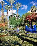 Morocco, Marrakech: Jardin Majorelle | Marokko, Marrakesch: Jardin Majorelle