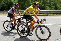 11th July 2021, Ceret, Pyrénées-Orientales, France; Tour de France cycling tour, stage 15, Ceret to  Andorre-La-Vieille;   POGACAR Tadej (SLO) of UAE TEAM EMIRATES, MAJKA Rafal (POL) of UAE TEAM EMIRATES  during stage 15 of the 108th edition of the 2021 Tour de France cycling race, a stage of 191,3 kms between Ceret and Andorre-La-Vieille.