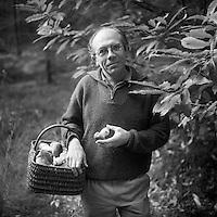 Europe/France/Limousin/19/Corrèze/Forêt domaniale de Sédières - Mr Faurie cherche les champignons [Autorisation : A13]
