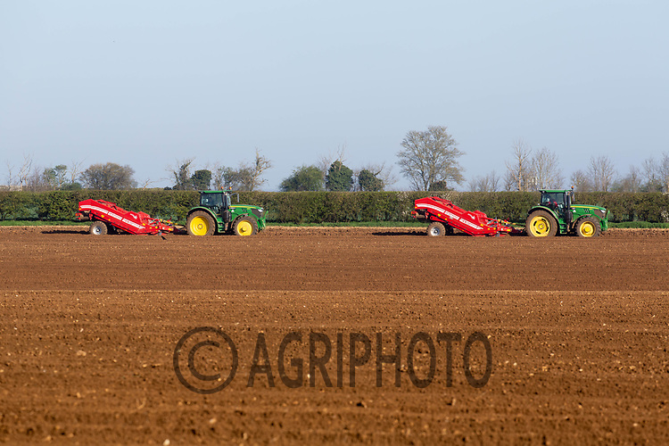 1-4-2021 Planting potatoes  in  Lincolnshire <br /> ©Tim Scrivener Photographer 07850 303986<br />      ....Covering Agriculture In The UK....