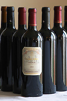 Bottle of Chateau d'Aydie 2003 Madiran France
