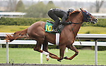April 03, 2014: Hip 104 Congrats - Fun Project consigned by Secure Investments worked 1/8 in 10:2  .  Candice Chavez/ESW/CSM