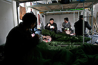 Migrant workers eat lunch in their dormitory which is temporary built next to a construction site in Beijing, China. The meal includes a big bowl of rice and a big bowl of cabbage with pork..