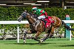 Jockey #8 Victor Wong riding Eagle during Hong Kong Racing at Happy Valley Racecourse on September 05, 2018 in Hong Kong, Hong Kong. Photo by Yu Chun Christopher Wong / Power Sport Images