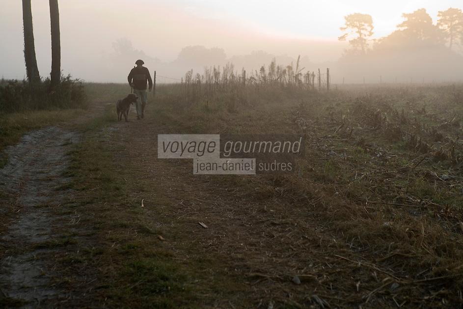 Europe/France/Aquitaine/40/Landes/Escalans:Avec Jean Barrère à  sa Palombière de la Ganaderia de Buros ,à l'aube dans la forêt landaise avec son chien.