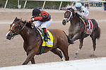 March 7, 2015: Ready for Rye ridden by jockey Luis Saez wins the Swale Stakes(G2). The favorite, Daredevil(1) was second. Gulfstream Park, Hallandale Beach (FL). Arron Haggart/ESW/CSM