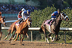 9 April 2010: Be Fair had an early lead before Zenyatta, riden by Mike Smith, wins the 45th running of the Apple Blossom at Oaklawn in Hot Springs, Arkansas
