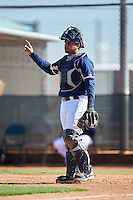 Milwaukee Brewers catcher Moises Perez (56) during an Instructional League game against the Cincinnati Reds on October 14, 2016 at the Maryvale Baseball Park Training Complex in Maryvale, Arizona.  (Mike Janes/Four Seam Images)