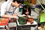Education High School male and female students working together on biology lab on plant growth