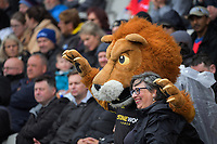 Lions mascot Leo during the Mitre 10 Cup rugby match between Wellington Lions and Tasman Makos at Jerry Collins Stadium in Wellington, New Zealand on Saturday, 31 October 2020. Photo: Dave Lintott / lintottphoto.co.nz