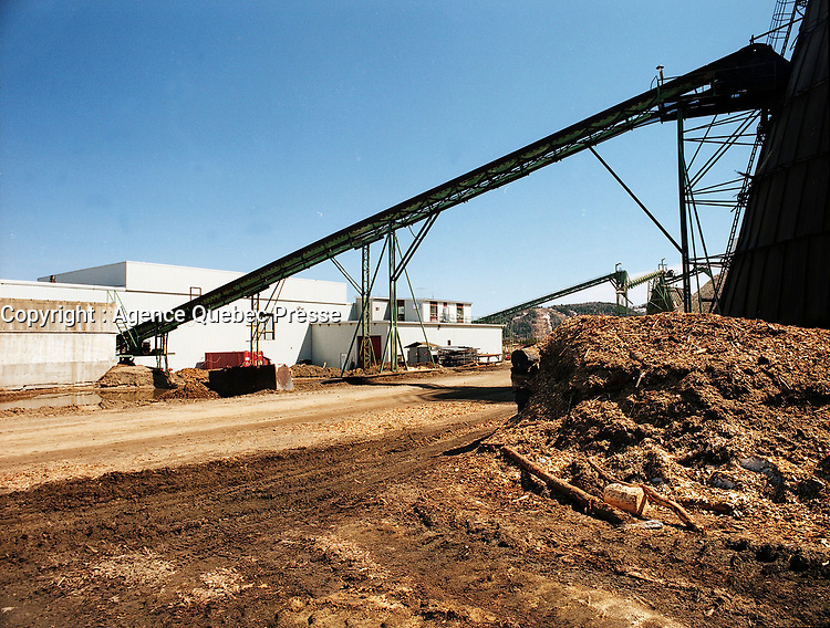 1998 File Photo, Forex<br /> wood panel factory, now owned by Louisian Pacific which shut it down in august 2006, because of wood low price, strond Canadaian Dollar and increased cutting fees inposed by Quebec Government.<br /> <br /> <br /> PHOTO : Agence Quebec Presse