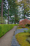 Garden path through evergreens in japanese garden.  The Japanese Garden in Portland is a 5.5 acre respit.  Said to be one of the most authentic Japanese Garden's outside of Japan, the rolling terrain and water features symbolize both peace and strength. Public, city facility