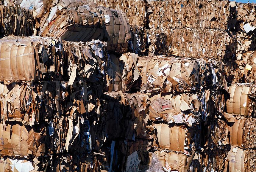 Bundled recycled cardboard. California.