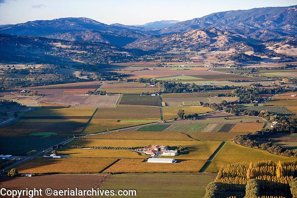 aerial photograph of Napa Valley vineyards in the fall, Napa County, California