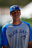 Toronto Blue Jays pitcher Emmanuel Vizcaino after an Instructional League game against the Pittsburgh Pirates on October 14, 2017 at the Englebert Complex in Dunedin, Florida.  (Mike Janes/Four Seam Images)