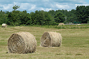 Bales of hay in a New Hampshire USA  field during the summer months. New Hampshire is  part of New England