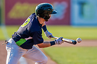 16 July 2017: Vermont Lake Monsters infielder Ryan Gridley, an 11th round draft pick for the Oakland Athletics, lays down a successful sacrifice bunt, advancing the runner from 2nd to 3rd, in the 7th inning against the Auburn Doubledays at Centennial Field in Burlington, Vermont. The Monsters defeated the Doubledays 6-3 in NY Penn League action. Mandatory Credit: Ed Wolfstein Photo *** RAW (NEF) Image File Available ***