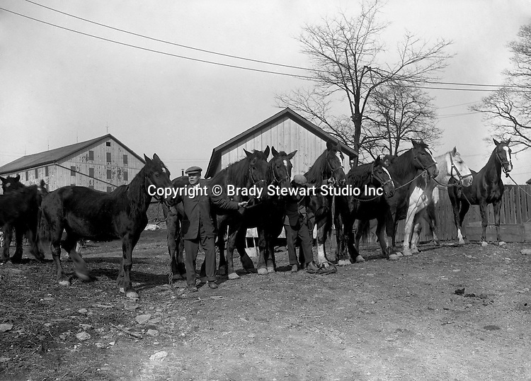 Southwestern OH: Businessman showing off horses to the members of the Brady Family outside of their Cincinnati Ohio home