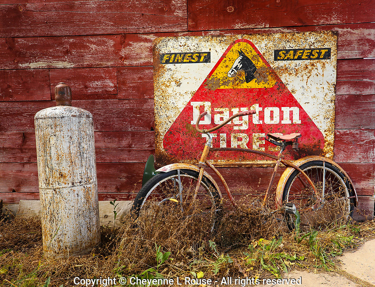 Dayton Tires Bike