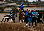 DEL MAR, CA - NOVEMBER 01: Horses walk onto the track for morning workouts at Del Mar Thoroughbred Club on November 1, 2017 in Del Mar, California. (Photo by Scott Serio/Eclipse Sportswire/Breeders Cup)