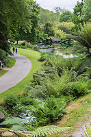 France, Bretagne, (29), Finistère, Brest:  Conservatoire Botanique National de Brest    //  France, Brittany, Finistère, Brest: The Conservatoire Botanique National de Brest