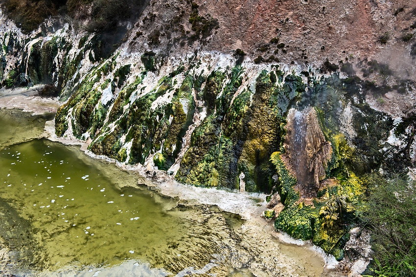 Stream formed by hot springs, with mineral deposits left by flowing hot water, Waimangu Volcanic Valley, Rotorua