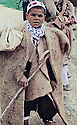Iraq 1963 .A young shepherd.Irak 1963.Un jeune berger