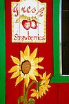 Roadside strawberries stand, Santa Maria, California