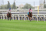 Catch a Glimpse(9) with Jockey Florent Geroux aboard runs to victory at the Natalma Stakes at Woodbine Race Course in Toronto, Canada on September 12, 2015.