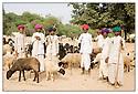 Inde<br /> Désert du Rajasthan, groupe de berger.