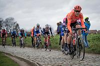 Matteo Trentin (ITA/CCC) up the Oude Kwaremont<br /> <br /> 72nd Kuurne-Brussel-Kuurne 2020 (1.Pro)<br /> Kuurne to Kuurne (BEL): 201km<br /> <br /> ©kramon