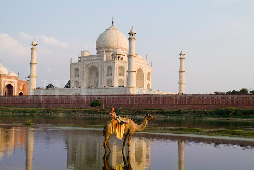 Taj Mahal temple burial site with Indian boy on camel, Yamuna River, Agra, India