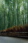 Arashiyama bamboo forest morning scenery in Kyoto, Japan. Image © MaximImages, License at https://www.maximimages.com