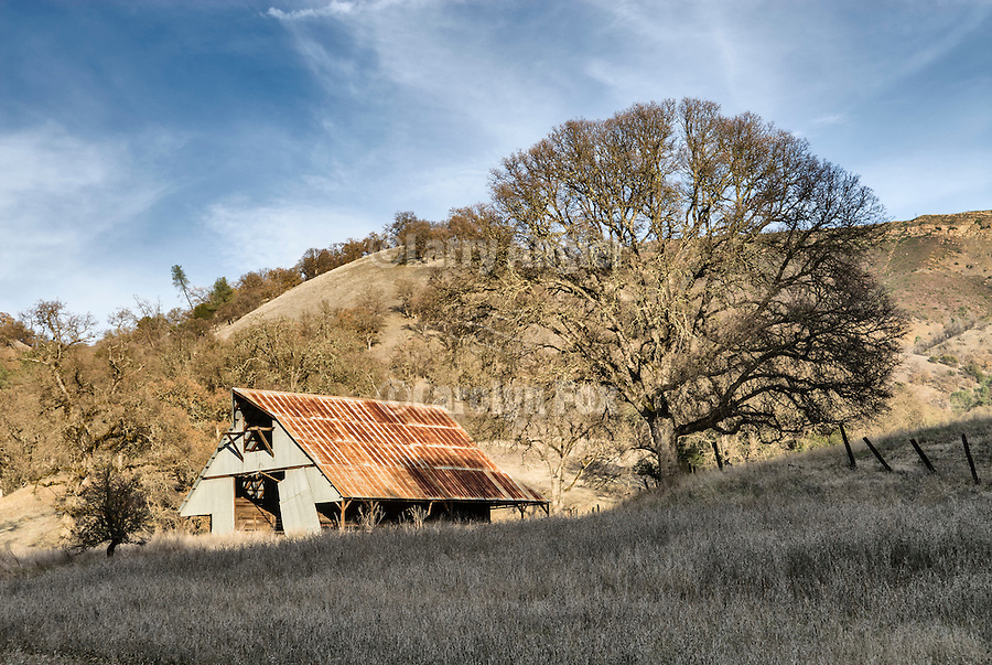 Corrugated and rusting barn, Knoxville, Calif.