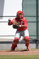Philadelphia Phillies catcher Deivi Grullon (10) during a minor league spring training game against the Pittsburgh Pirates on March 18, 2014 at the Carpenter Complex in Clearwater, Florida.  (Mike Janes/Four Seam Images)