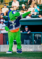 12 June 2021: Mascot Champ entertains the fans between innings of a game between the Westfield Starfires and the Vermont Lake Monsters at Centennial Field in Burlington, Vermont. The Lake Monsters defeated the Starfires 4-1 at Centennial Field, in Burlington, Vermont. Mandatory Credit: Ed Wolfstein Photo *** RAW (NEF) Image File Available ***