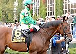 Finnegans Wake, ridden by Joel Rosario, runs in the Joe Hirsch Turf Classic Invitational Stakes (GI) at Belmont Park in Elmont, New York on September 29, 2012.  (Bob Mayberger/Eclipse Sportswire)