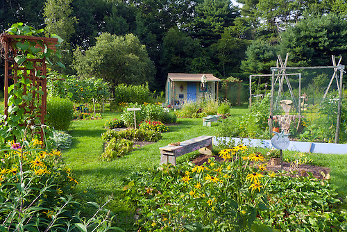 Evening in the comunity garden looking to the children's shed, Yarmouth ME