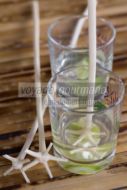 """France/DOM/Martinique/Le François: Hôtel Cap Est Lagoon Resort & Spa - Restaurant """"le Caampèche"""" service du ti-punch rhum blanc AOC - citron vert agité avec le lélé batonnet provenat d'un arbre a fourche"""