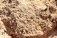 close up of erroded sandstone rocks, Ios Cyclades Island Greece