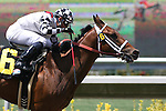 30 July 2009: Gallant Gent (2yo c by Yankee Gentleman) wins an allowance race under jockey Joel Rosario at Del Mar Race Track, Del Mar, CA