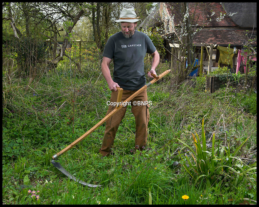 """BNPS.co.uk (01202 558833)<br /> Pic: DavidFitzgerald/BNPS<br /> <br /> Grim Reaper - Chris Riley.<br /> <br /> Poldark heartthrob Aiden Turner may have got housewives hot under the collar with his shirtless meadow-mowing - but his """"excessive sweating and grunting"""" has left the scything community seething.<br /> <br /> Turner set hearts aflutter when he stripped off to manfully mow a hay field with a scythe, an ancient cutting tool used for centuries prior to horse drawn and modern mowing machinery.<br /> <br /> But while the sexy scene helped send audience ratings through the roof, it prompted a scathing critique from a band of enthusiasts dedicated to keeping the age-old art alive.<br /> <br /> They say Turner's macho grunts and terrible technique as he hacked at the hay tarnished the view of the usually """"sedate"""" action of scything."""