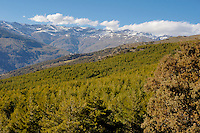 Snowy mountain summits above Capileira village in the Alpujarras mountains, Andalusia, Spain.