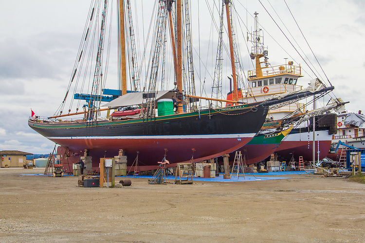 Schooners, Pacific Grace, and Pacific Swift, Sail and Life Training Society, Homeport Victoria, B.C, Canada. on the hard, Boat Haven Marina, Port of Port Townsend, Port Townsend, Washington,