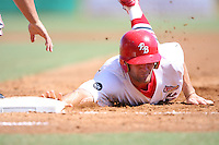April 15, 2009:  Right Fielder Shane Peterson (16) of the Palm Beach Cardinals, Florida State League Class-A affiliate of the St. Louis Cardinals, during a game at Roger Dean Stadium in Jupiter, FL.  Photo by:  Mike Janes/Four Seam Images
